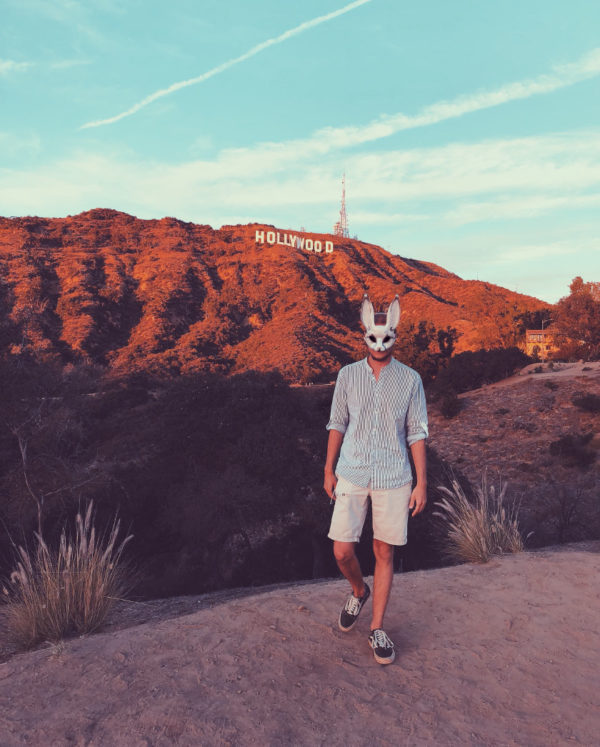 HS white rabbit in LA Hollywood sign Master of love and life